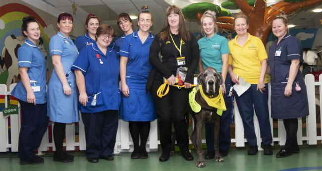 Dog owner Debbie Stewart, centre, with Great Dane Missy and staff from the Royal Albert Edward Infirmary's Rainbow Ward staff