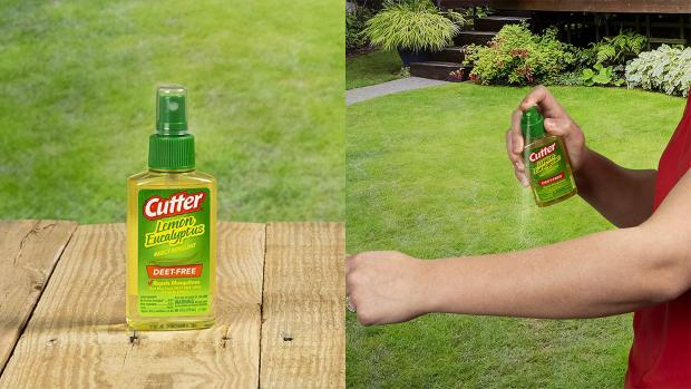 Leigh Journal: Ditch the horrible smelling insect repellents for one that's fragrant and offers up to six hours of protection. Credit: Cutter