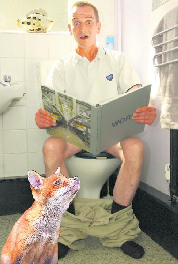 Leigh Journal: Anthony Schofield says he was attacked by a fox which burst in on him as he sat on the toilet
