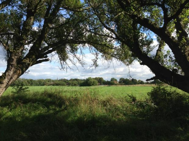 Leigh Journal: The land south of Atherton