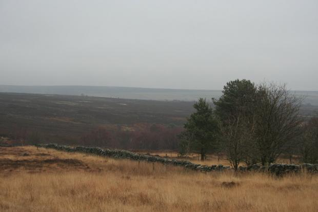 Teh walk takes in the best of the West Pennine Moors