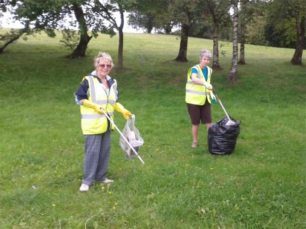 Litter pick in need of help