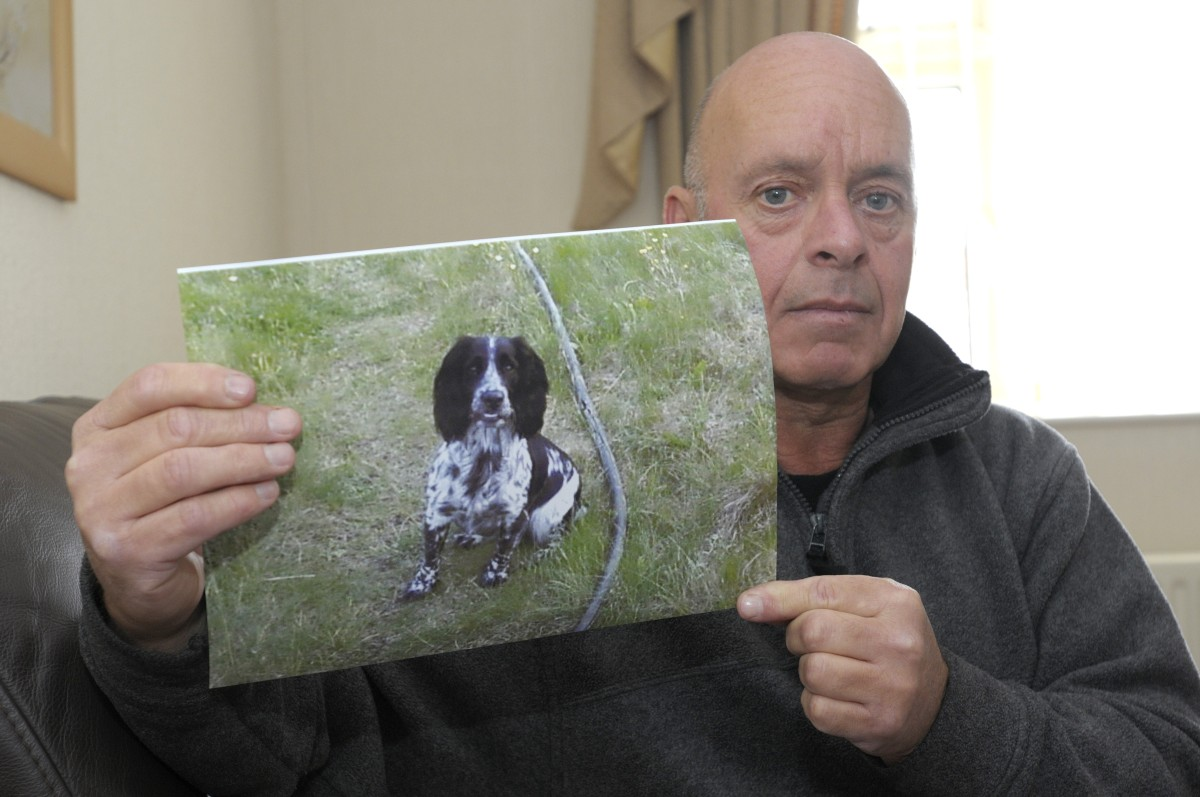Gary Hallows' dog Sally died from the disease